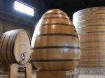 Dominique de Beauregard, le rôle du bois dans le vin dans Métiers du vin domnique-de-beauregard-150x112